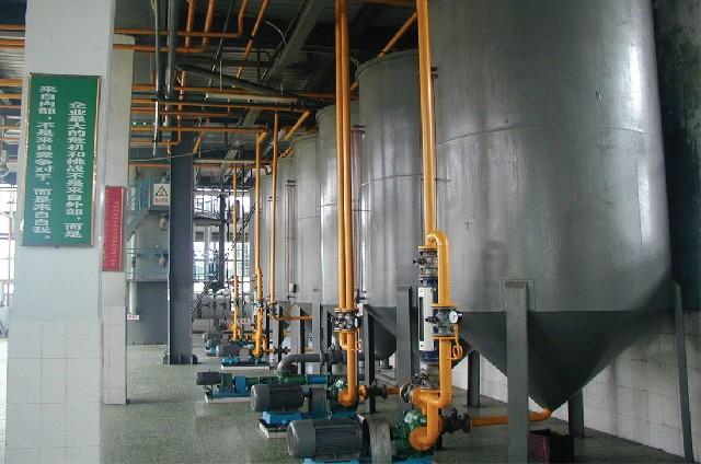 米糠油榨油设备
